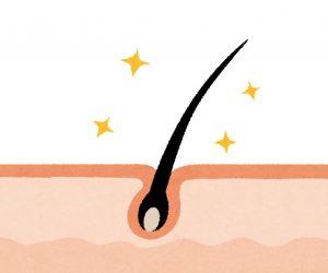 脱毛するなら知っておきたい毛周期の基礎知識を徹底解説!